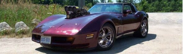 W03_c3_lila_1980_Chevrolet_Corvette_C3