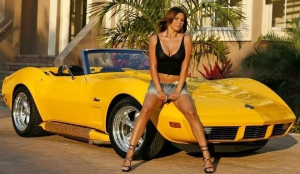 W63_Corvette-C3-y_50